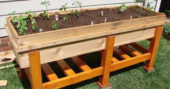 Waist High Raised Garden Plans