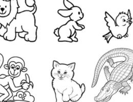 Imagenes De Animales Omnivoros Para Dibujar Faciles On Log Wall