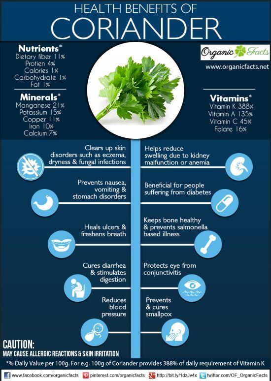 Health Benefits Of Coriander Organic Facts The Health