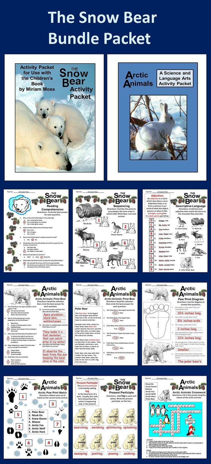 Winter Activities Animal Activities, Arctic Wolf and