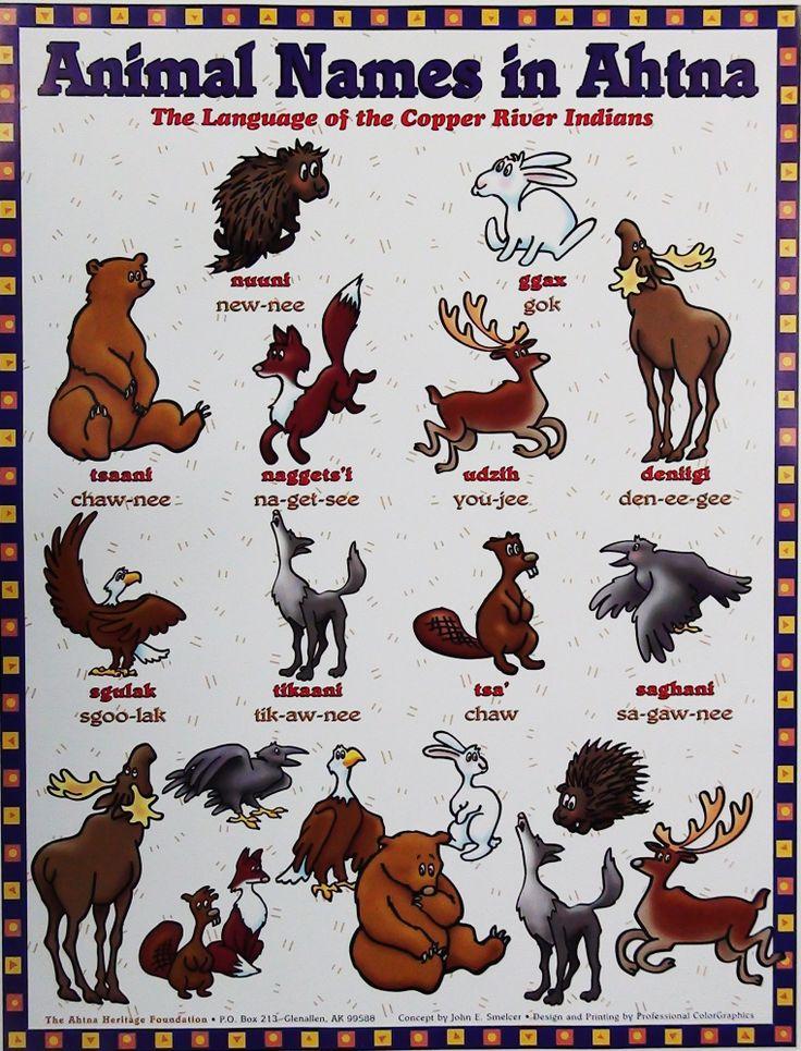 Animal Names in Ahtna Athabascan Pinterest Animal