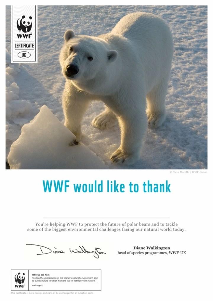 World Wildlife Fund Christmas Cards | Cardbk.co