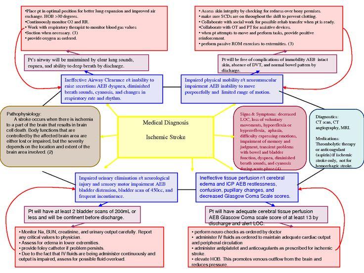 Nursing Diagnosis Concept Maps Concept Map PLU Pacific
