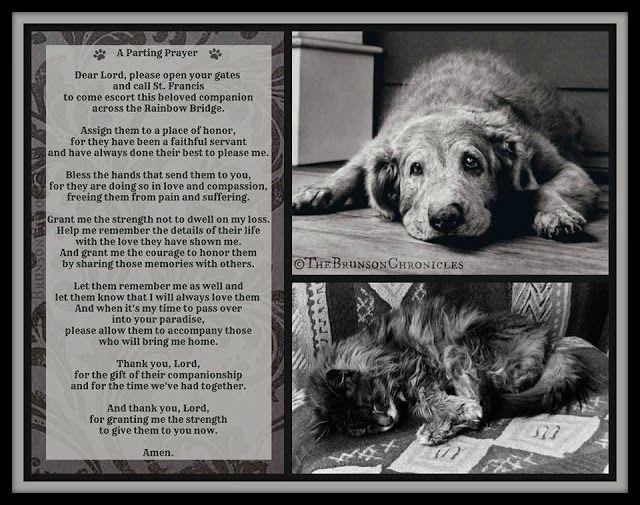 Printable Bridge Poem Rainbow Dogs