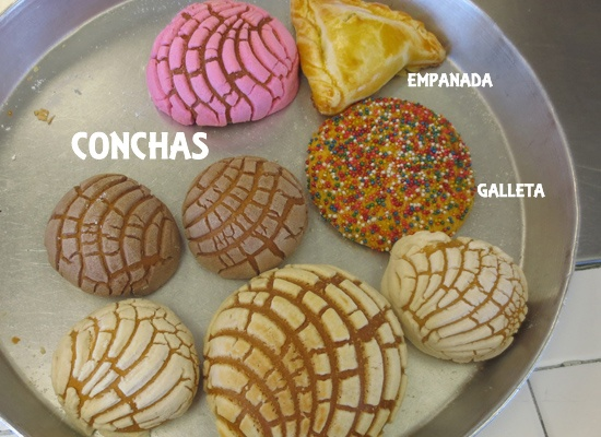 Mexican Sweet Bread 101 A Trip to the Panaderia Learning