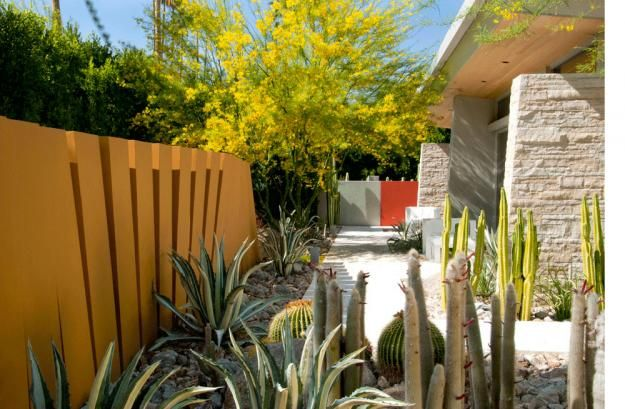 32 Best Images About Palm Springs Gardens On Pinterest
