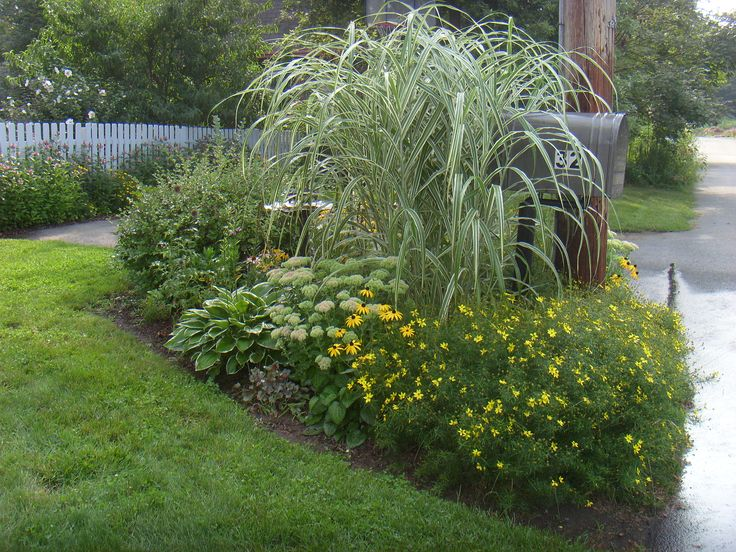 Mailbox Garden End Of Summer Ornamental Grass To Cover