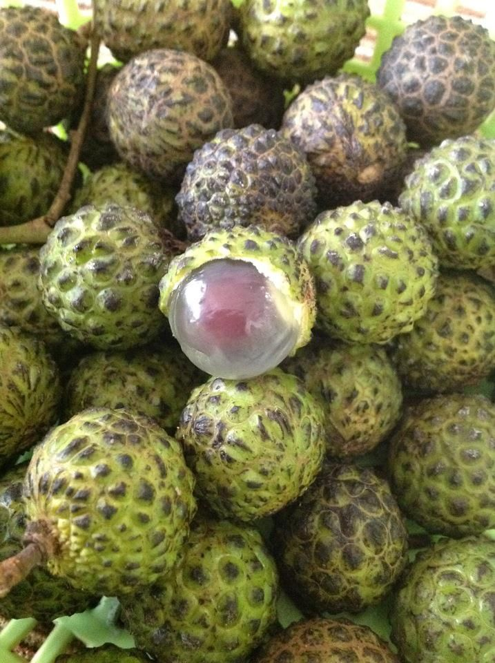 rare indonesian fruits alupag