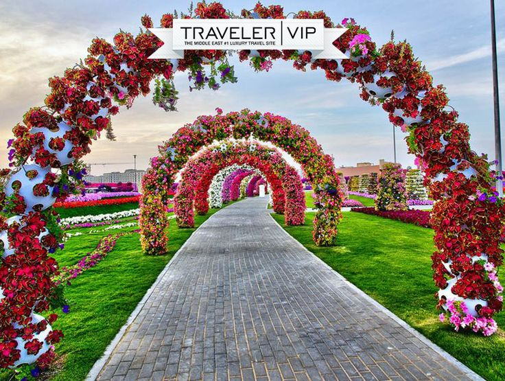 Miracle Garden, the world's largest natural flowers garden