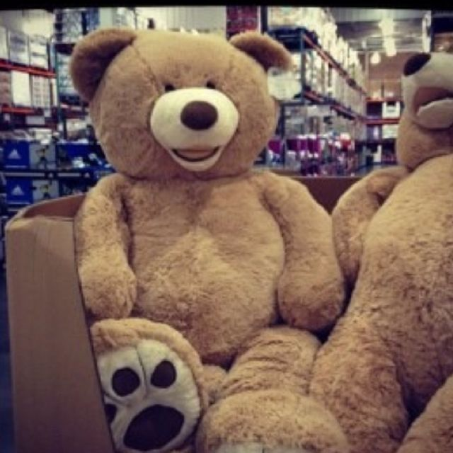 220 Best Images About Giant Teddy Bear On Pinterest Toys Stuffed Animals And Giant Stuffed