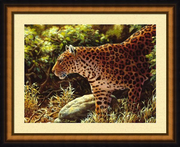 145 Best Images About My Animal Art On Pinterest