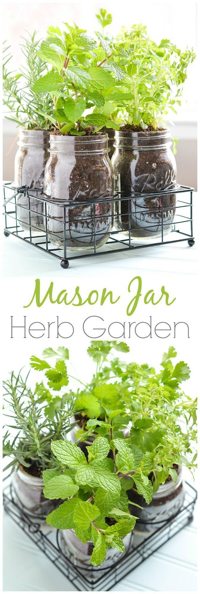 Mason Jar DIY Herb Garden Small SpaceGardening