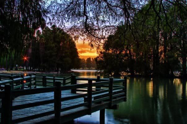 Lake at Fairmount Park, Riverside, CA I remember