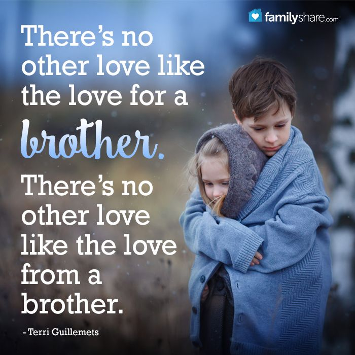Quotes About Brothers Love