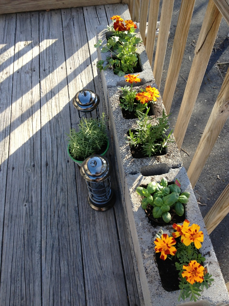 Our small herb garden on the deck. Gardens