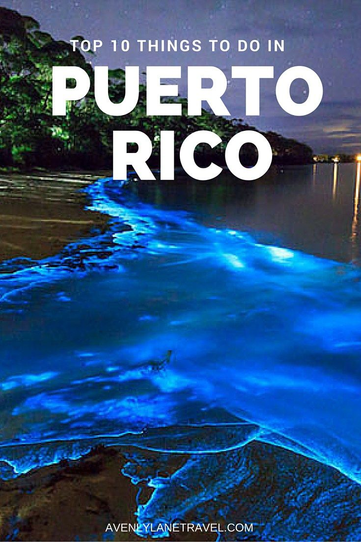 Top 10 Things To Do In Puerto Rico National Forest