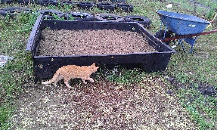 repurposed truck bed liner.