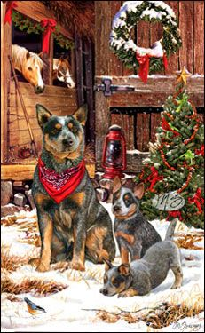 17 Best Ideas About Dog Christmas Cards On Pinterest Dog