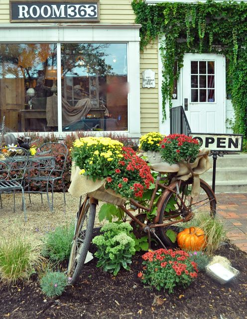 Great for fall decor..mums in a bicycle basket. DIY