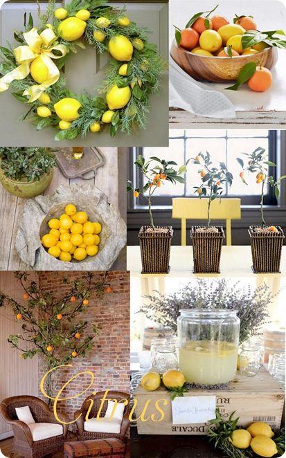 Lemon Kitchen Decor Fruit