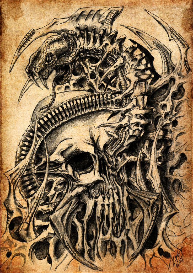 Skull and Snake, biomech by on