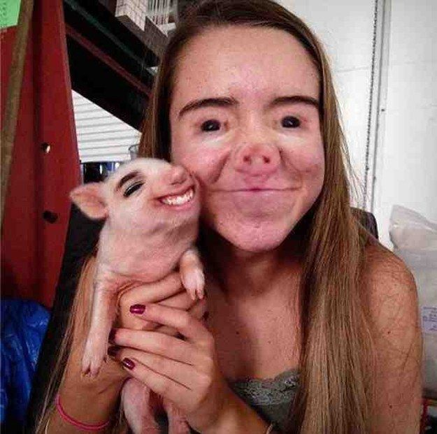 The Piglet: | 26 Face Swaps