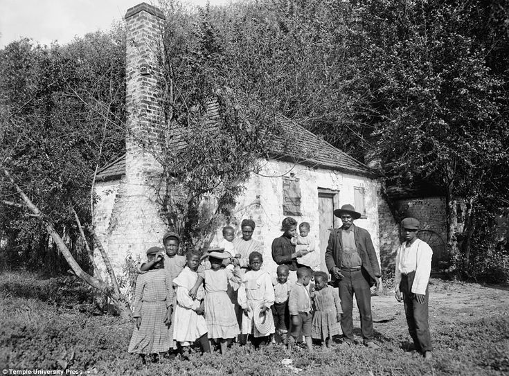 Picturing freedom How former slaves used photography to