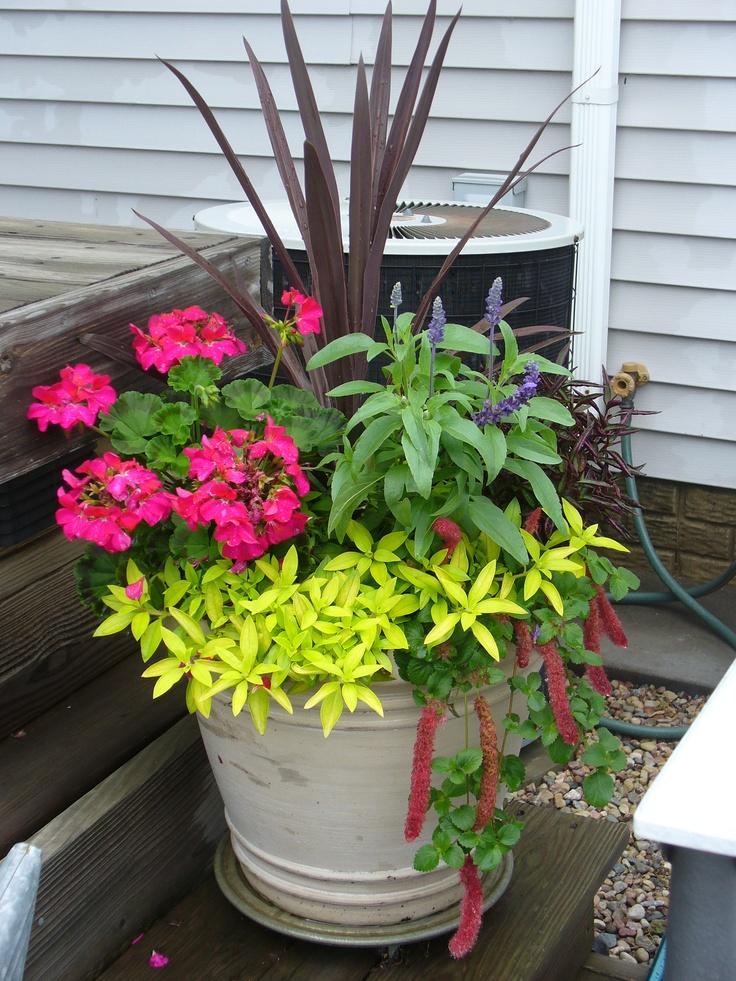 Flowers on the deck flower pot ideas Pinterest Posts