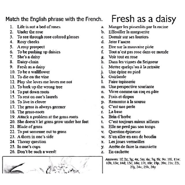 English phrases in French. J'adore français beaucoup