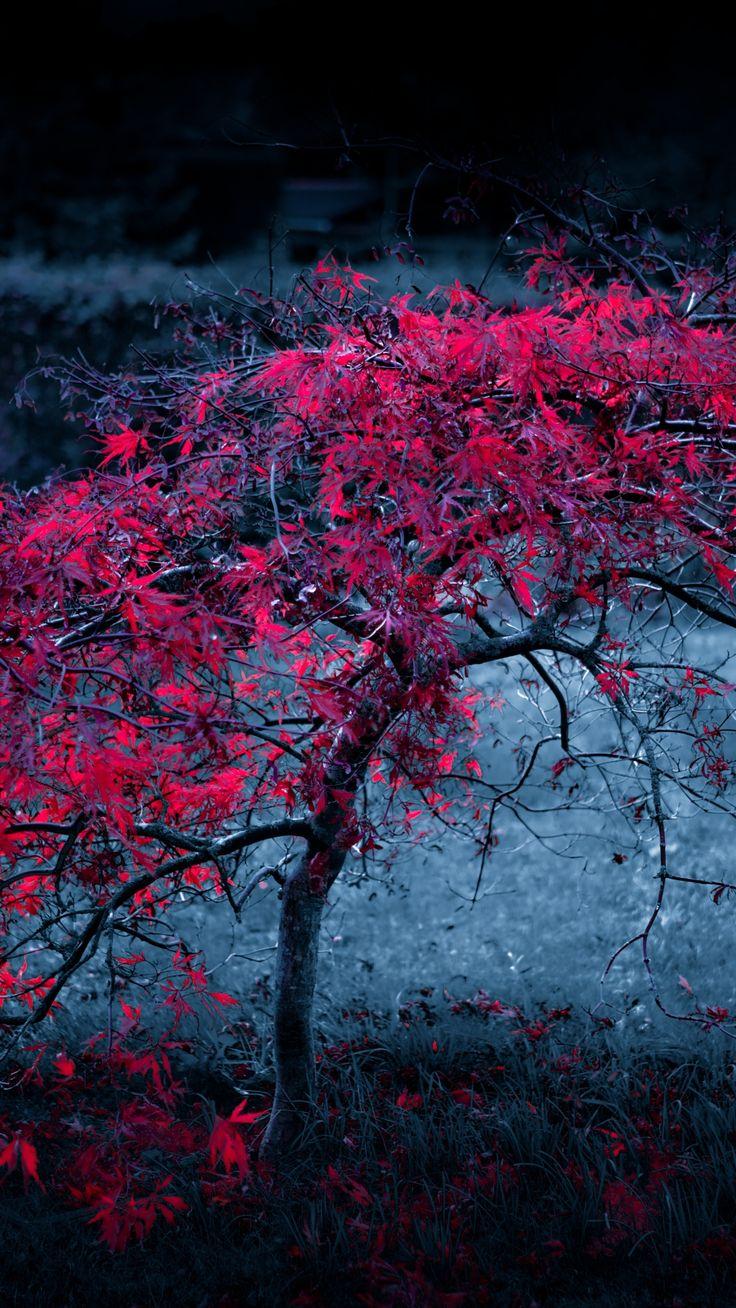 Tree Leaves Fog Light Purple Autumn iPhone 6 plus