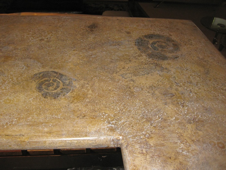 Fossil Countertops Decorating With Nature Pinterest