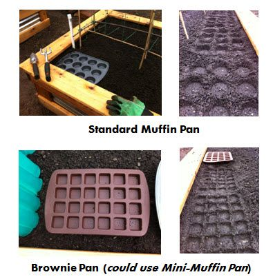 Brilliant – square foot gardening templates using muffin tins – Very clever inde