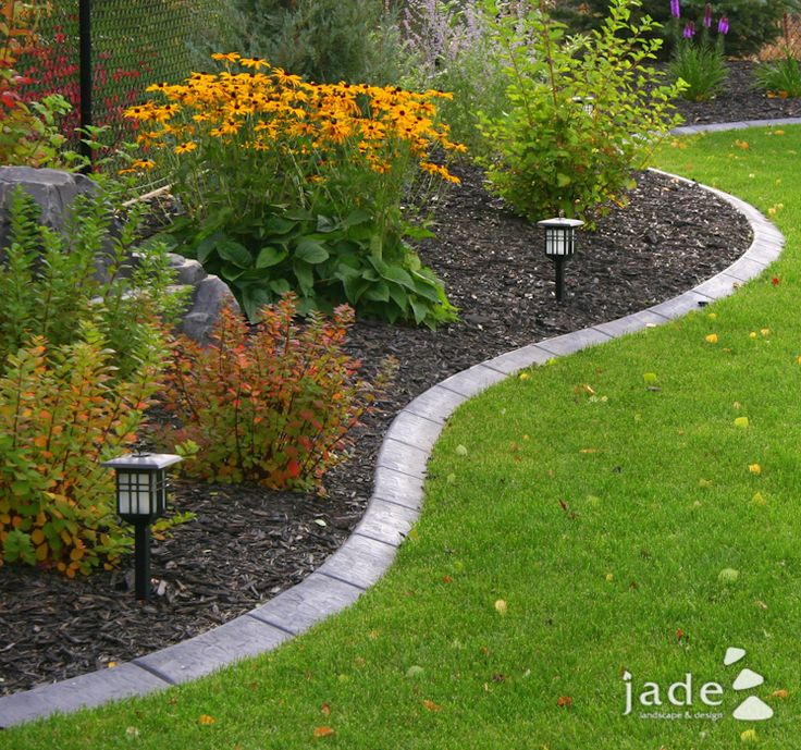Nicely defined flower bed. I love the brick edging