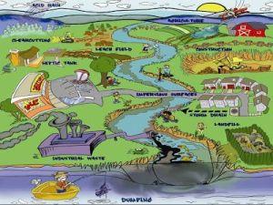 kindergarten pollution worksheet  Google Search | CC Cycle 2 Week 6 | Pinterest | Kindergarten