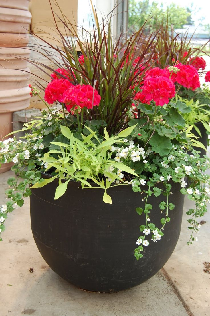 Patio Flower Pots Ideas. 1000 images about diy flower pots ...