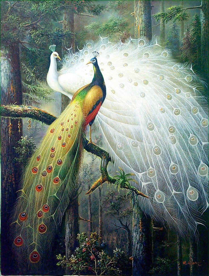 Peacock Oil Painting India Pinterest Heavens, Birds