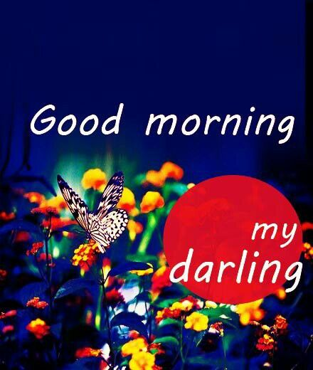Good Morning Love Quotes Him