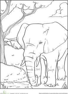 Image Result For Worksheet Color The Animals