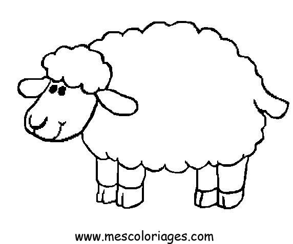 sheep pages and on pinterest