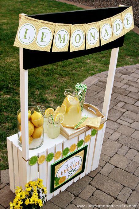 DIY lemonade stand, grocery