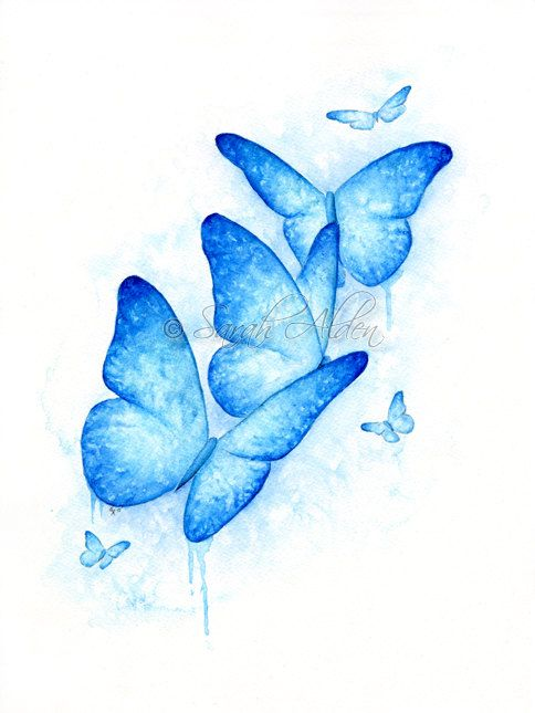 Blue Butterfly Print Butterfly Watercolor Painting