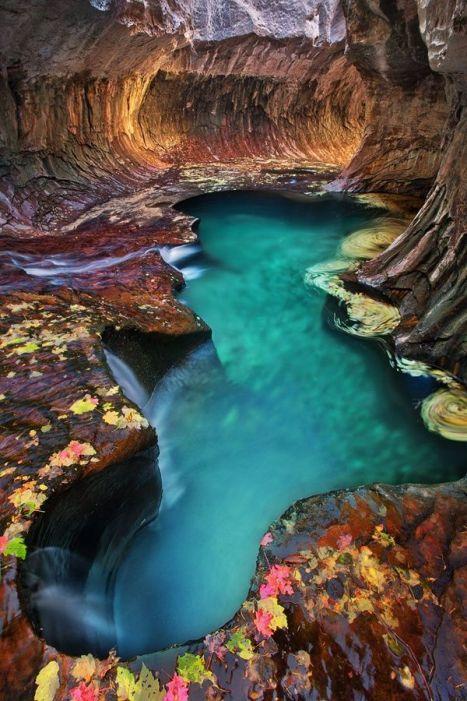 Image result for Zion National Park, Utah
