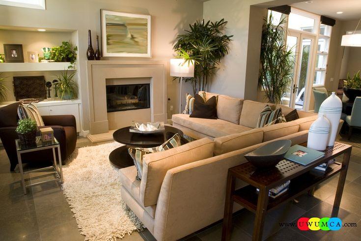 Sized Rectangular Living Room Decorating Ideas