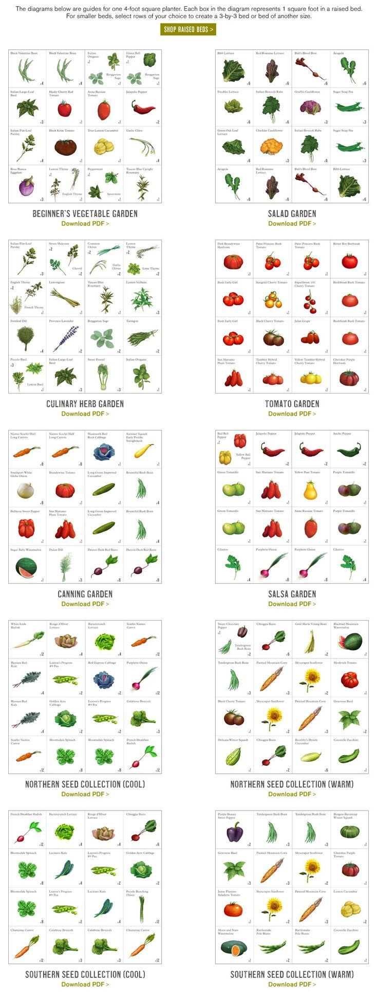 Beginner's vegetable garden, salad garden, herb garden, tomato garden, canning garden, salsa garden, northern and southern seed
