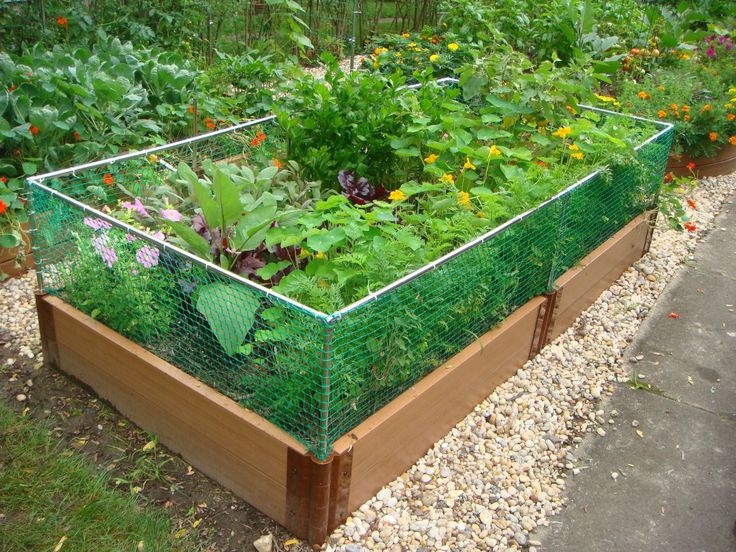 Rabbit fencing for raised garden beds... maybe DIY with