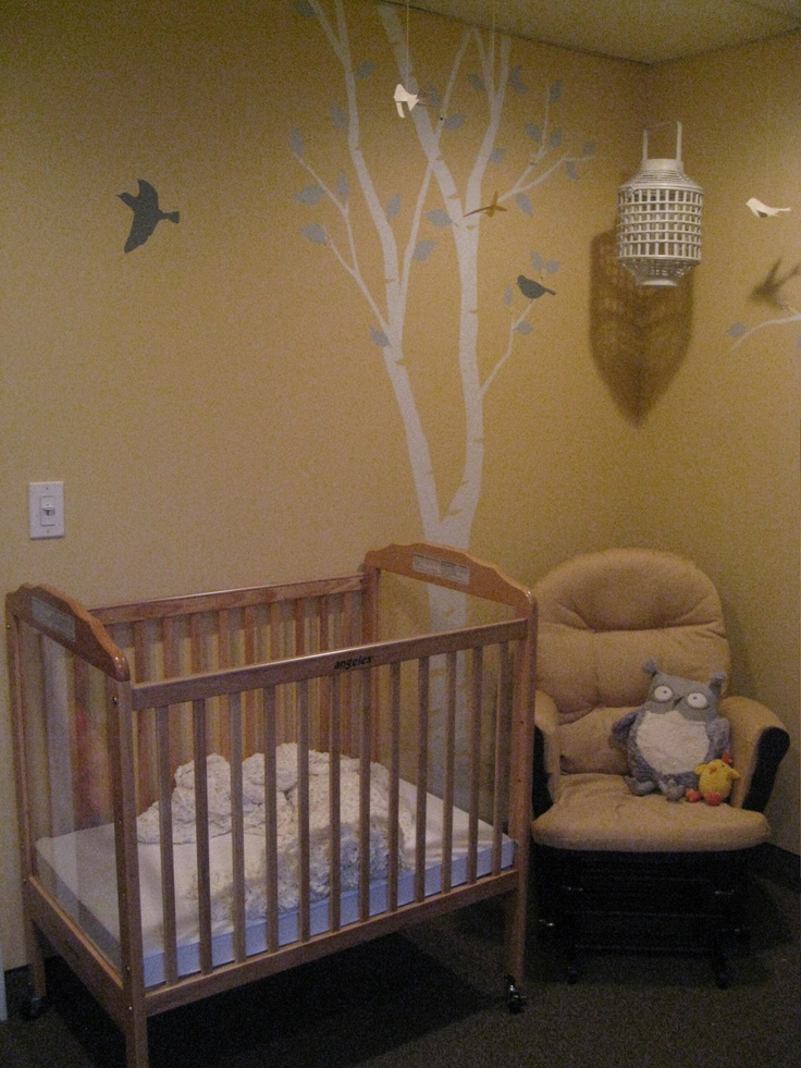 Bird Themed Church Nursery I Designed Favorite Places