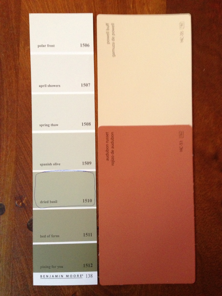 Basement Paint ColorsBen Moores Powell Buff Audubon