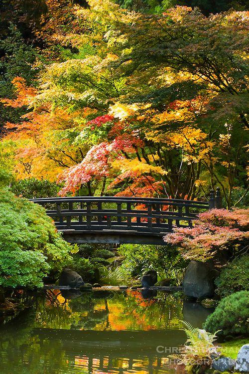 Moon Bridge in strolling pond garden (chisen kaiyu shiki