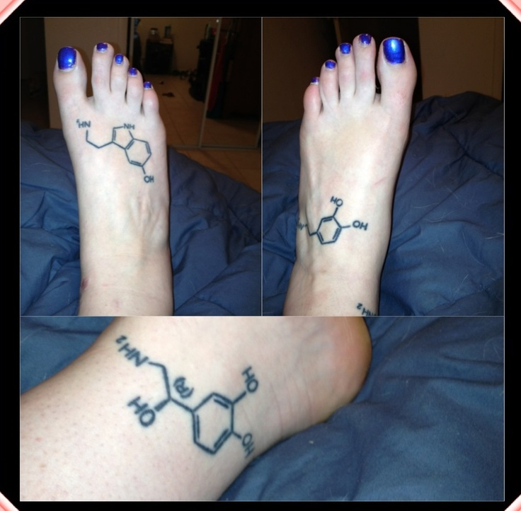Serotonindopaminenorepinephrine (chemical imbalances in