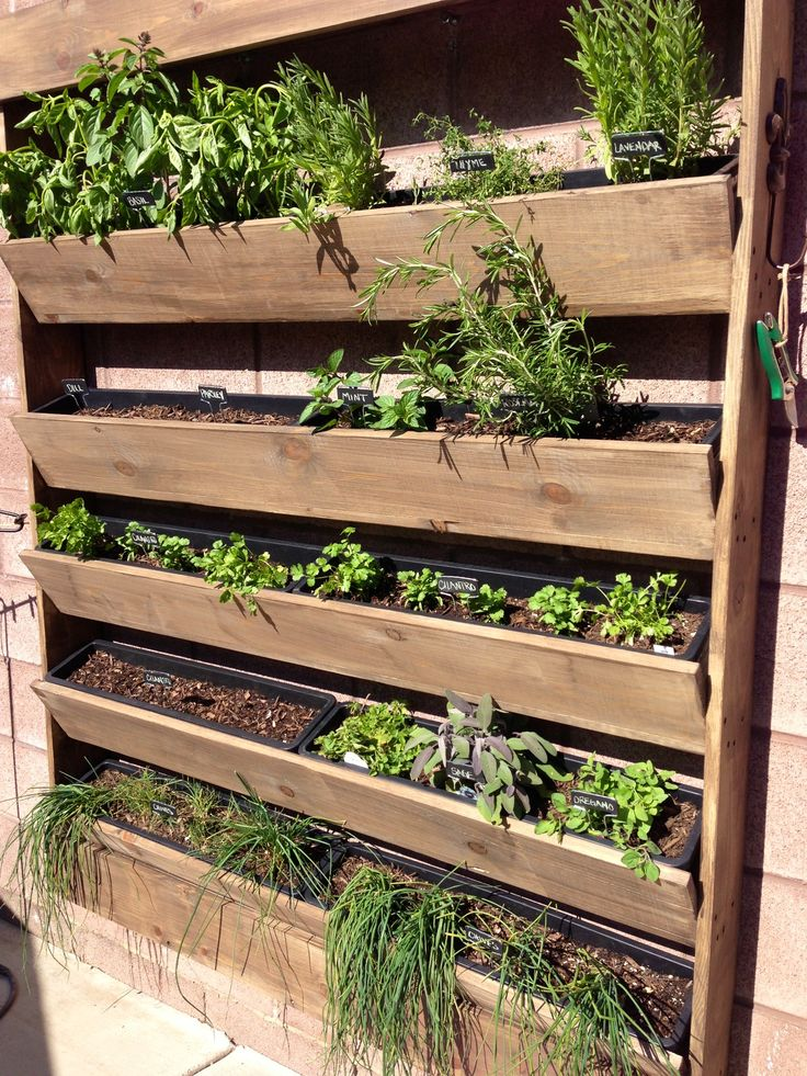 Herb Wall Planter/Garden iGarden Pinterest Herb